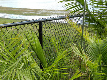PVC Coated galvanized Chain Link Fence , dark green color RAL6005