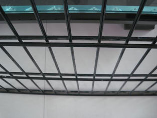 Double wire mesh fence/Pvc coated twin wire 868 fence panel/welded wire mesh fence