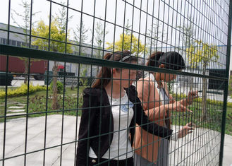 "6'x10' powder coated temp construction fence panels mesh 2""x4"" 50mm*100mm*8.5ga/3.8mm  outer frame 1""/25mm x 1.5mm thick"