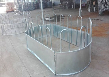 China Australia standard galvanized cattle panel fence Cattle Crush,Cattle Chute factory