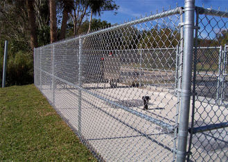 Hot dipped galvanized 9 gauge chain link wire mesh fence