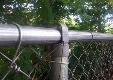 3.76mm - 50x50mm PVC coated chain link fence