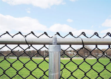 China PVC Coated Chain Link Fence Manufacturers China ,ence Supplied factory