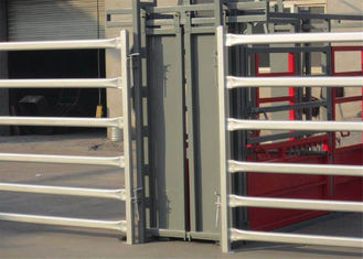 From Budget Cattle Panels To Extra Heavy Duty Portable Corral Panels For Cattle