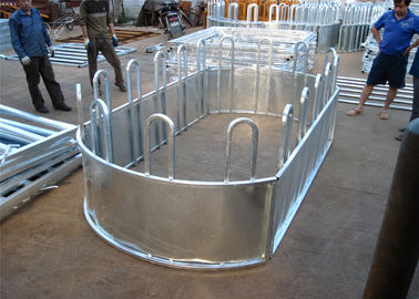 Six Bars Heavy Duty Metal Oval Rai Portable Corral Panels For Cattle
