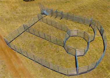 China 40x40 1.8M x 2.1M Heavy Duty Portable Cow Fence Panels 6 Oval Bars 30*60mm factory