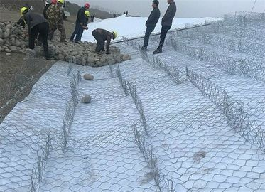 China Gabion Wire Mesh Basket factory
