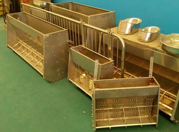 sow stainless steel automatic pig feeder tough double side pig feeder