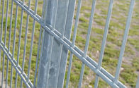 Galvanized Double Wire Fencing / Twin Mesh Panel Fencing Systems (ISO9001: 2008), Powder Coated supplier