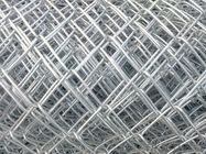 Galvanized Steel and PVC Coated Galvanized Steel Chain Link Fence Netting supplier