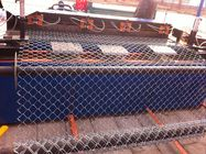 china Chain Link Wire Mesh Fencing , PVC Coated Chain Link fences ,Plastic Chain Link Fence supplier