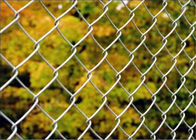 Diamond wire mesh/6ft Black Vinyl Coated Galvanized Chain Link Fence supplier