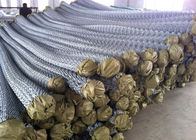 Electro galvanized chain link fence/pvc coated chain link wire mesh supplier