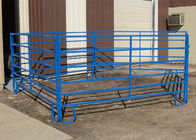 1.8m x 2.1m, 1.6 x 2.1m, 1.8m x 2.4m 42mm hot dipped galvanized cattle farm gate fence / used corral panels supplier
