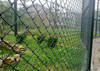Green PVC Coated Garden Fence, pvc coated diamond wire mesh, Green PVC Coated Chain Link Fencing,Diamond Mesh Fence supplier