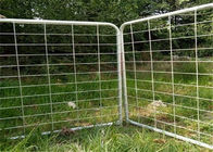 Australia Standard Oval Tube 2100 X1800 Galvanized Cattle / Horse Yard Farm Gate Fence supplier