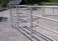 USA standard 8'h x 6'w Horse Round Pen Galvanized 5-Rail Gate Panel Farm Gate Fence supplier