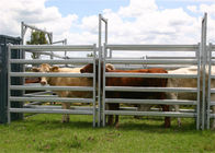 Top quantity galvanized heavy duty used horse fence panels 1.8X2.1M supplier