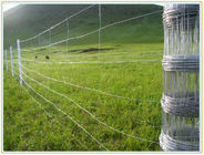 Galvanized Wire Mesh Fence Field 164ft Zoo Wild Fencing Roll Hardware supplier