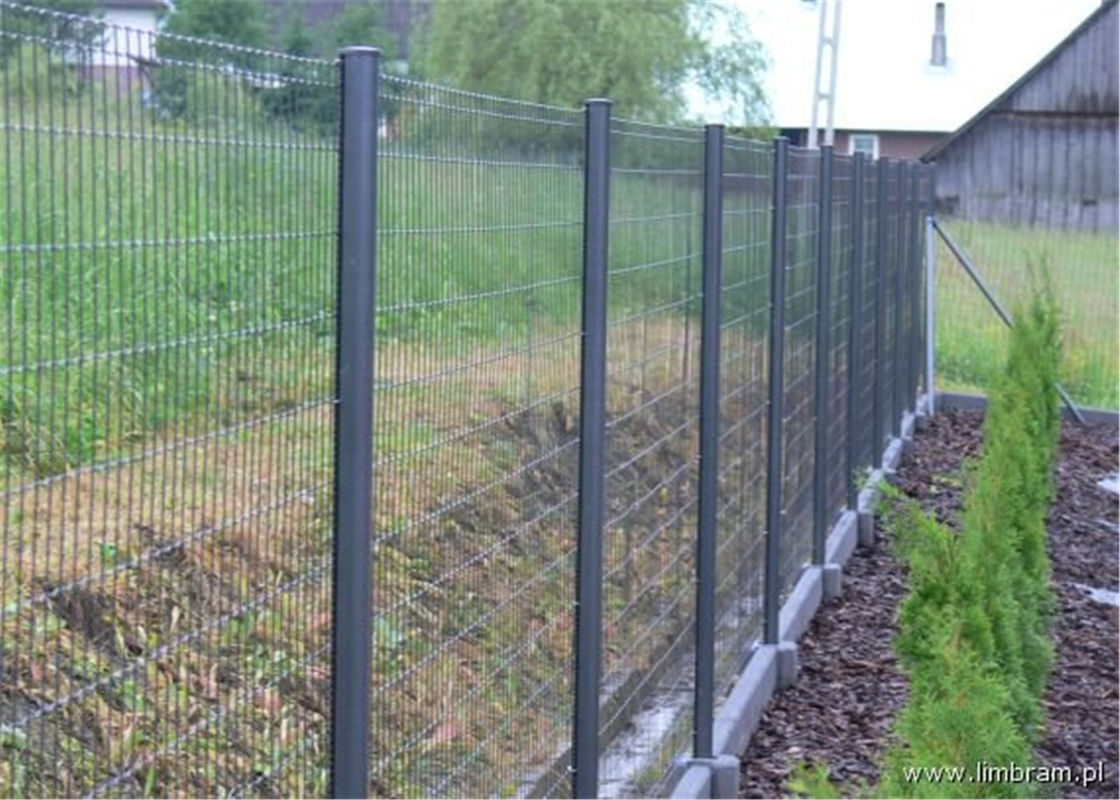 PVC Coated Security Protected Fence/Wire Mesh Fence