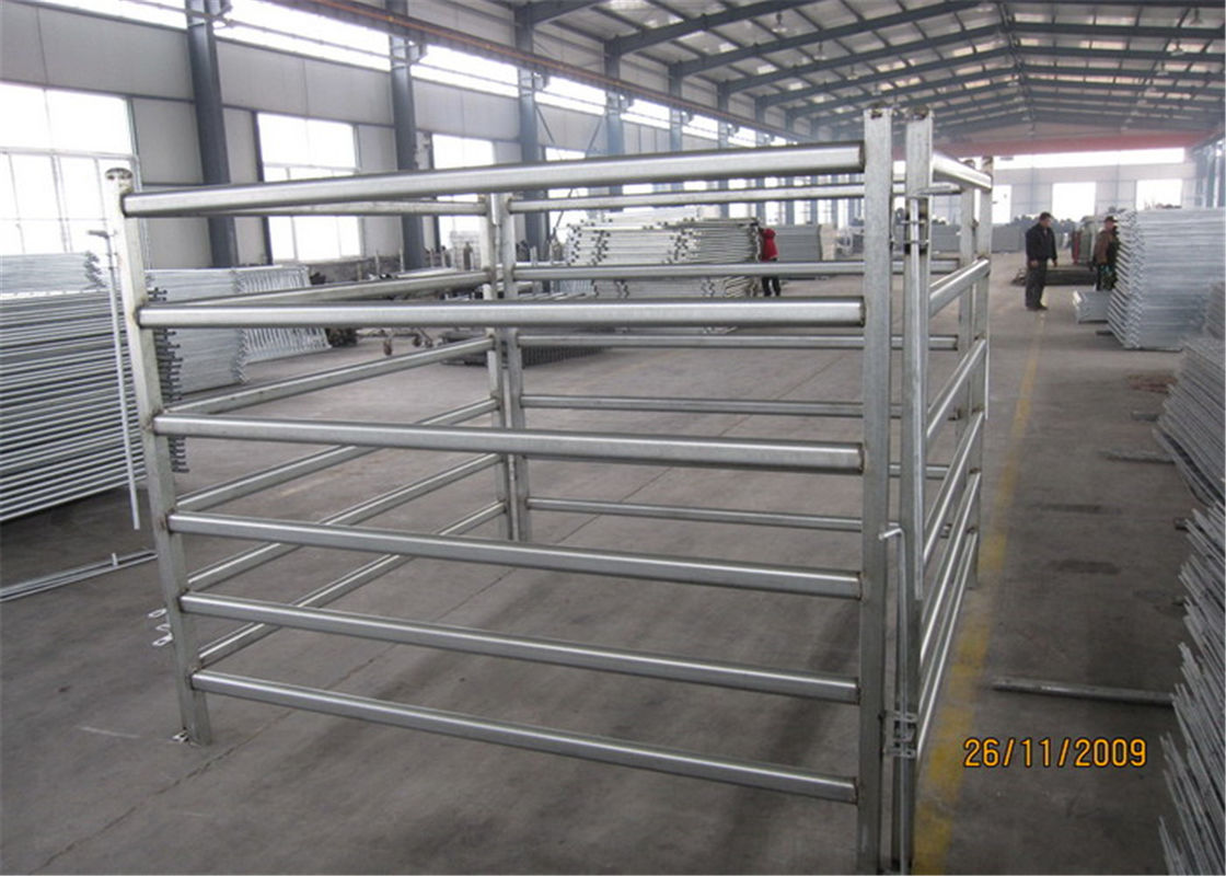 Horse panels 1.6m x 2.1m and 1.8m x 2.1m 5 bars 6 bars available supplier
