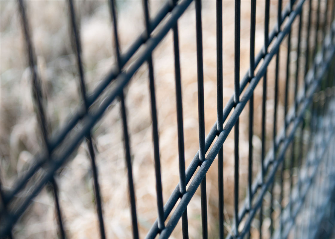 Powder Coated Twin Wire Welded Mesh /Double Wire Mesh Fence Panels supplier