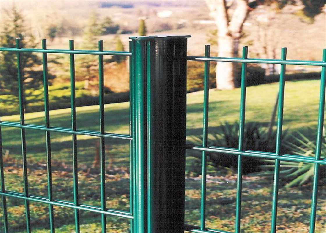 Double Wire Mesh Fence Pvc Coated Twin Wire 868 Fence