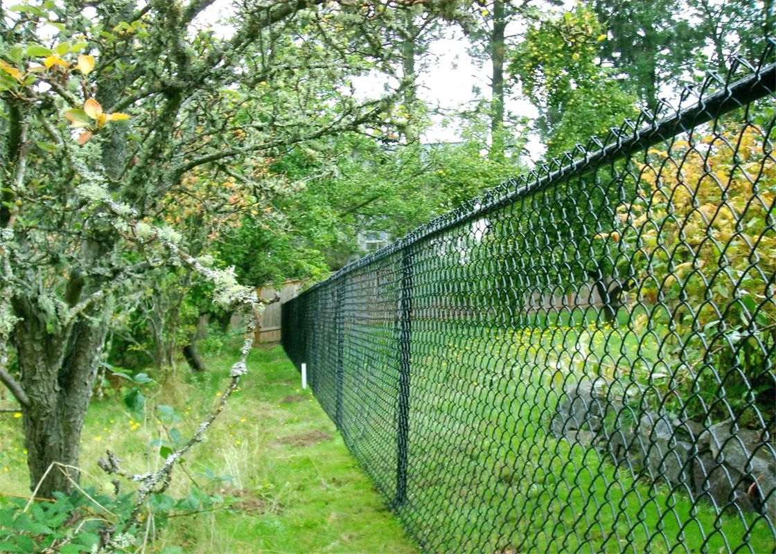 65mm x 65mm x 4.00mm black pvc coated chain wire fence for sale