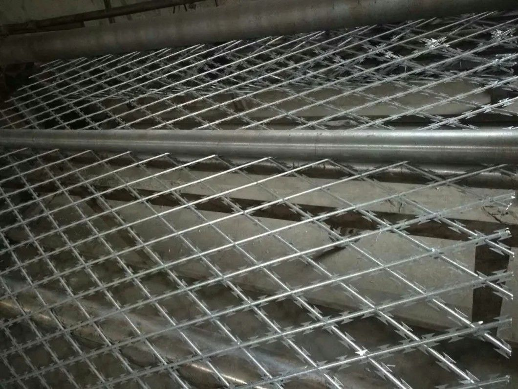 Concertina Welded Wire Mesh supplier