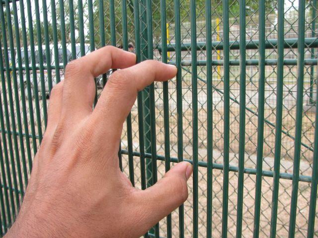 High Security Mesh Panel Pro-sure 358 Fencing