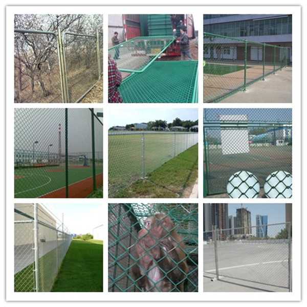 Galvanized 50X50mm 100X100mm Chain Link Fence