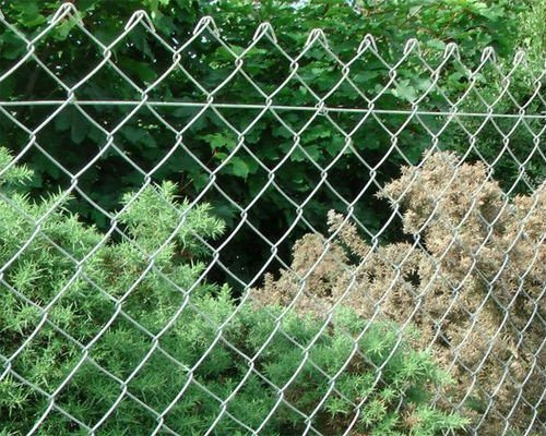 PVC Coated /Zinc Coated /Plastic Spray Chain Link Fence