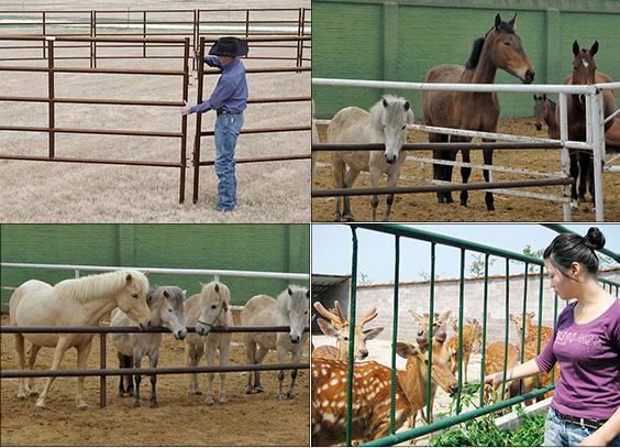 Livestock Farm Fence / Horse Fence Panel / Cattle Fence Panel horse sheep stockyard corral panel yard gate